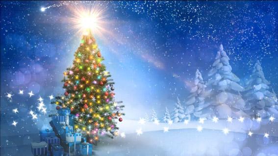 Beautiful Christmas Background.Beautiful Christmas Tree Background Video