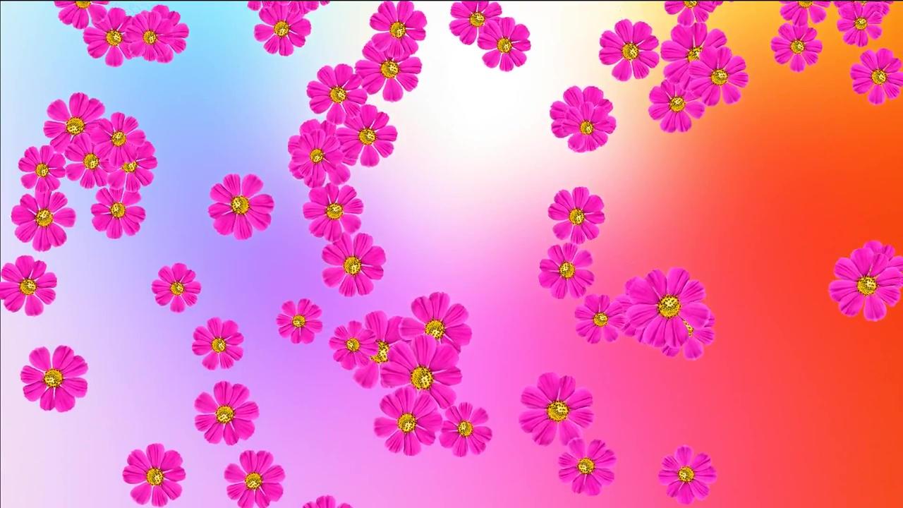 Картинки анимация цветы фон