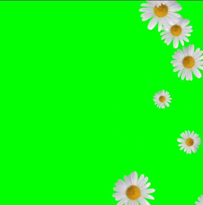 Buy animated background