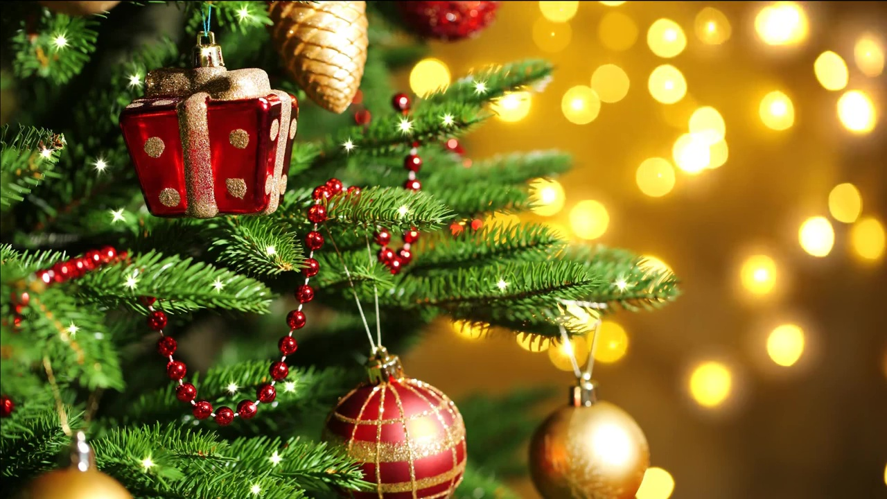 Buy Video For Christmas With Sparkles And Light Effect Background