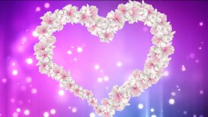 Buy heart video with animated white flower