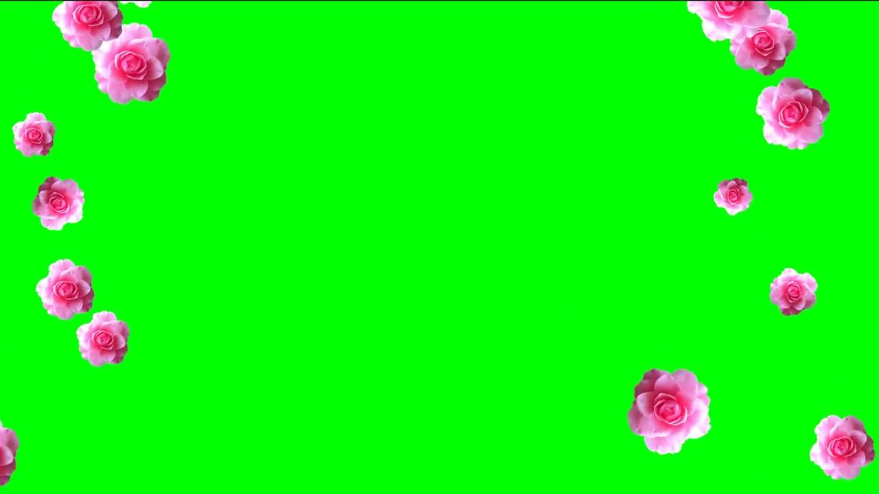 Video Falling Roses For Wedding Chroma Key
